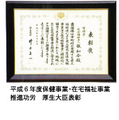 平成6年度保険事業・在宅福祉事業 推進功労 厚生大臣表彰